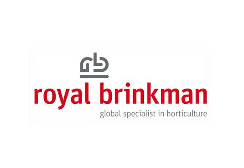 royal-brinkmark